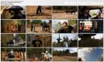 Rycerze chaosu / Knights Of Mayhem (2011) PL.TVRip.XviD / Lektor PL