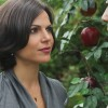 c541ba195166899 En Images : Once Upon a Time (saison 1)